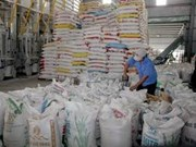 Riz : Can Tho expédiera d'un million de tonnes en 2014
