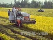 Agriculture: Vietnam et R. de Corée intensifient leur coopération