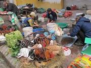 Le Vietnam lance un plan d'action contre la grippe A (H7N9)