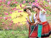 """Fête """"Les couleurs du printemps dans l'ensemble du pays"""""""