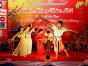 La diaspora vietnamienne fête leur Têt traditionnel