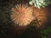 Le Vietnam en fête pour l'Année du Cheval