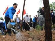 Lancement de la fête de la plantation d'arbres à Hai Duong