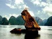 Le parc national de Bai Tu Long, un trésor en pleine mer