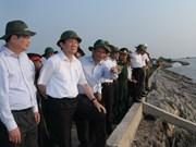 Le chef de l'Etat inspecte les digues maritimes dans le delta du Mékong