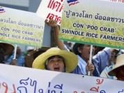 Thaïlande : la CE autorise le paiement des riziculteurs