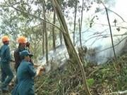 Les incendies au Parc national Hoàng Lien ont été contrôlées