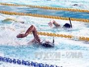 Natation : de nouveaux records aux Championnats nationaux