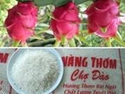 Long An: le riz parfumé et le fruit du dragon certifiés aux Etats-Unis