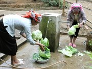 Projet d'eau propre de la BM pour 10.000 foyers à Hà Nam