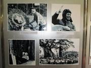 L'exposition sur le général Vo Nguyen Giap à Hanoi