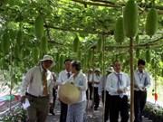 Le Vietnam réalise strictement ses engagements sur le développement durable
