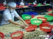 Mesures de connectivité pour l'import-export au sein de l'ASEAN