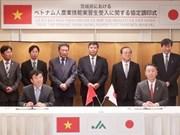 Vietnam et Japon coopèrent dans la formation de ressources humaines