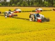 Grands débuts pour les assurances agricoles au Vietnam