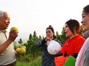 Un agronome Viêt kiêu au service des agriculteurs