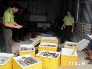 Le Vietnam contre le trafic des espèces sauvages