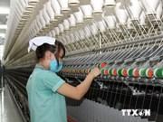Mise en chantier d'une usine de fibres à Dong Nai