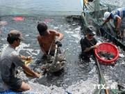 Pêcheurs et agriculteurs protègent la souveraineté maritime et insulaire