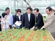 Le Japon partage avec HCM-Ville des expériences dans l'agriculture high-tech
