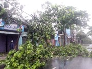Le Vietnam pourrait subir des supers typhons cette année