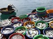 Kien Giang vise 614.000 tonnes de produits aquatiques en 2014