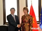 Le ministre vietnamien des Affaires étrangères rencontre ses homologues allemand et danois
