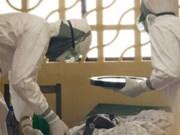 """Ebola: l'ampleur de l'épidémie """"largement sous-évaluée"""""""