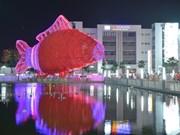 Record : la plus grande lanterne carpe du Vietnam