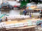 Près de 4,4 millions de tonnes de riz exportées depuis janvier