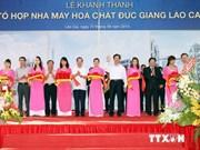 Inauguration d'un complexe chimique de Duc Giang Lao Cai