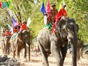 Chez les M'Nong, l'éléphant est l'égal des hommes
