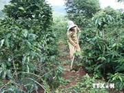 Accélérer la réalisation des OMD dans les régions peuplées de minorités ethniques