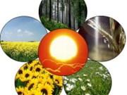 Potentiel de développement de la bioénergie