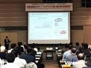 A Osaka, la province de Quang Nam présente ses atouts
