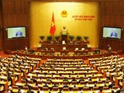 AN : l'aéroport de Long Thanh et plusieurs projets de loi en débat
