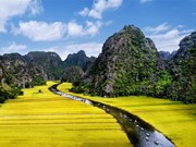 Ninh Binh, la terre de l'ancienne capitale
