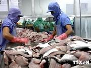 Pangasius : le Vietnam crie à l'injustice concernant les taxes antidumping américaines