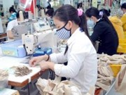 Des points brillants de l'économie vietnamienne en 2014