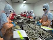 Crevettes : 4,1 milliards de dollars d'exportations en 2014