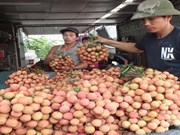 Le Vietnam conserve un excédent commercial dans ses échanges avec l'Australie