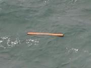 Avion d'AirAsia: des dizaines de corps retrouvés en mer