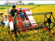 Vietnam : futurs modèles de restructuration agricole