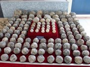 Découverte d'un dépôt de boulets de la dynastie des Ho