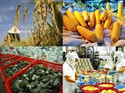 Développement de cinq groupes de secteurs où le Vietnam est compétitif