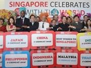 Le Vietnam participe au défilé de Chingay 2015 à Singapour