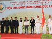 L'Institut de recherche en riziculture du delta du Mékong à l'honneur