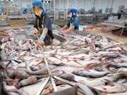 Pangasius : le Vietnam proteste contre les taxes antidumping américaines