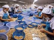 Noix de cajou : record à l'export en 2014