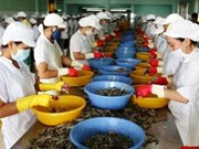 De belles perspectives pour les exportations de crevettes en R. de Corée